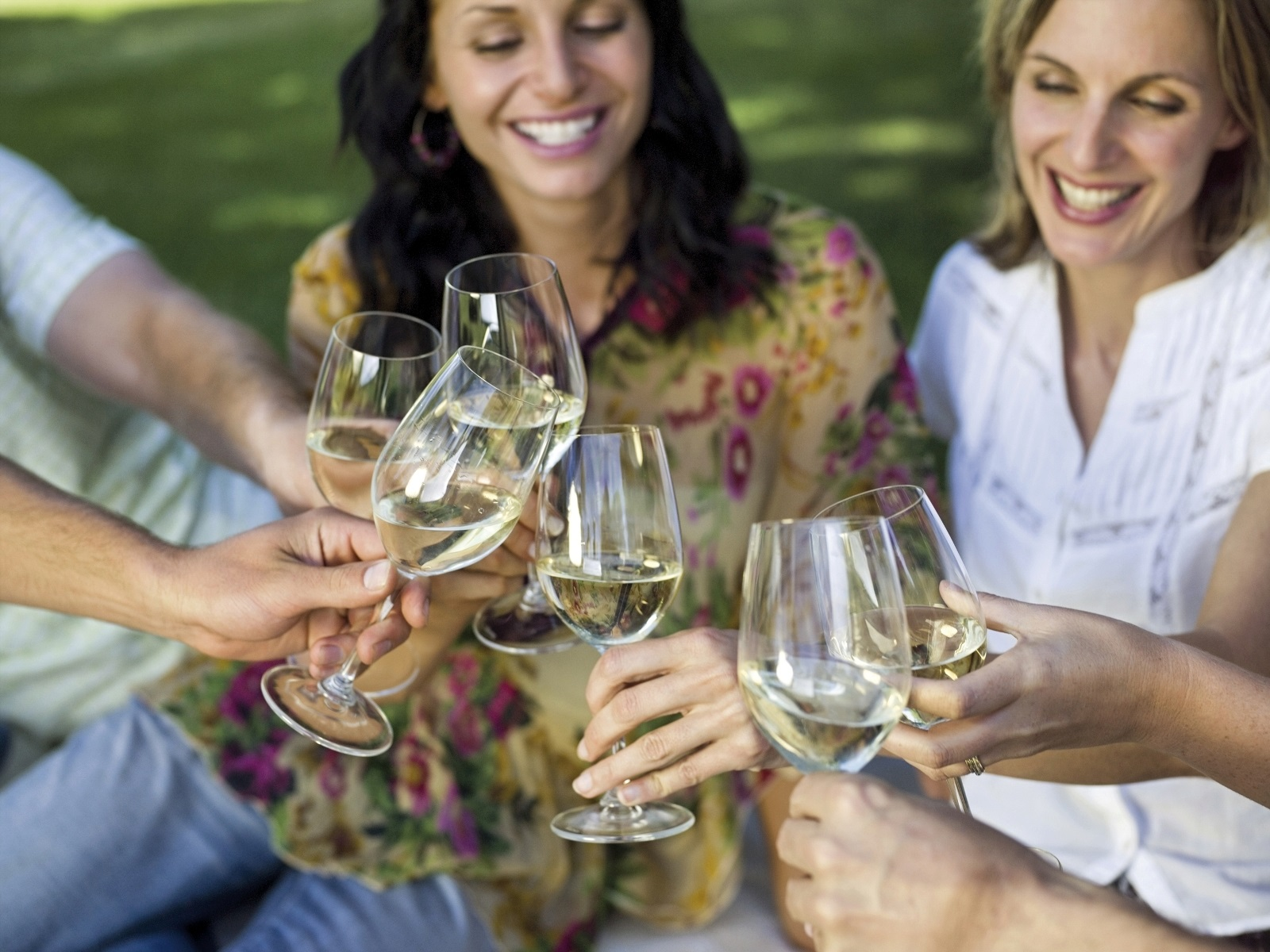 3 hr charlottesville wine tour for up to 6 people