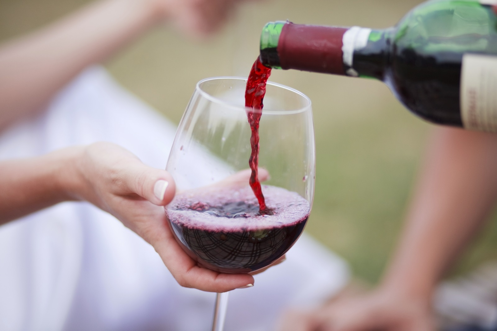 Charlottesville wine and beer tours
