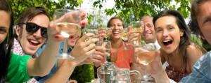 Charlottesville wine tours