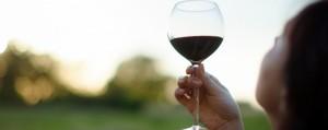 Tour Charlottesville Wineries