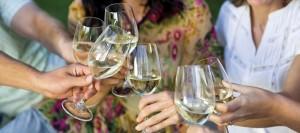 Cheers - Charlottesville Wine Tours