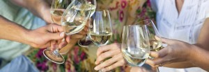 Cheers - Charlottesville Wine Tours